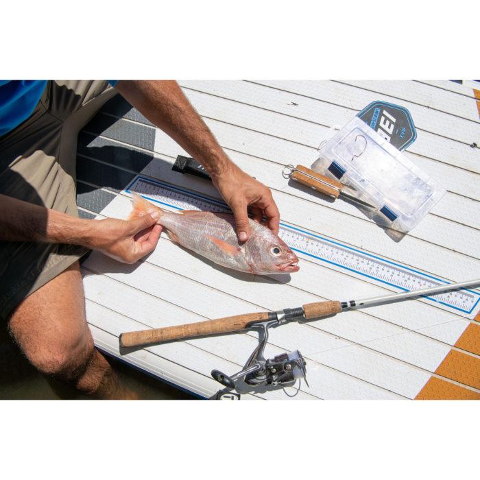 stand up paddle board thurso surf max fish ruler